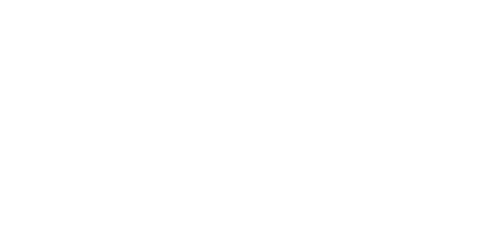 Bushido Fight and Fitness Gear